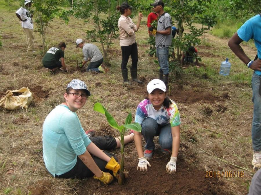 Sophomore Emma Tran gardens at the Environmental School in the Dominican Republic.