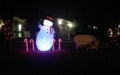 Photo Gallery: Christmas Lights