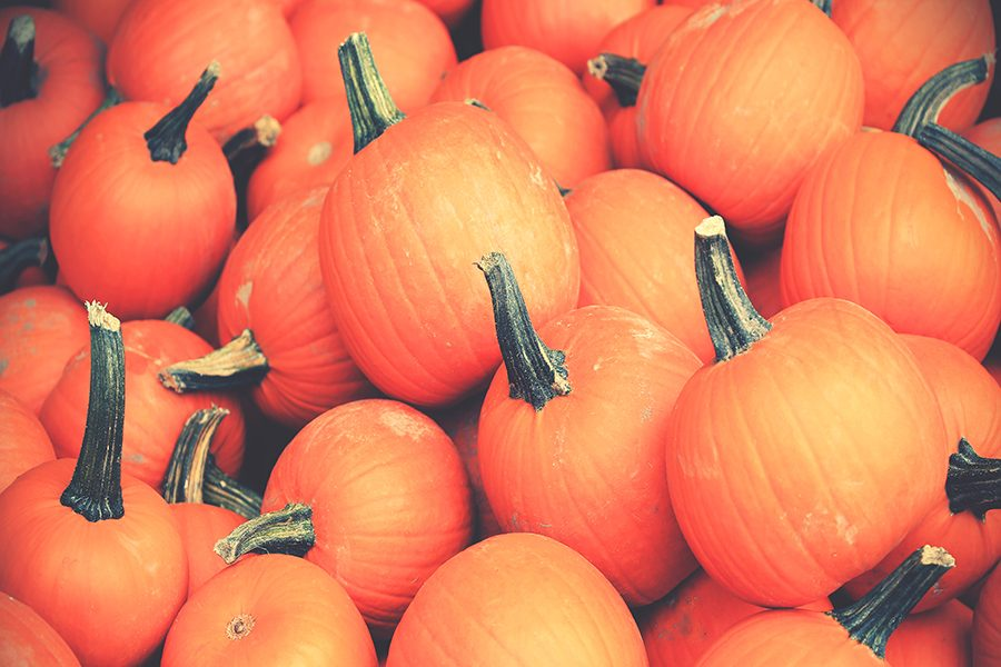 5 MORE things to do with a pumpkin