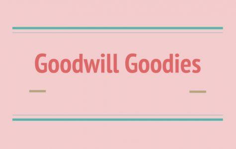 Goodwill Goodies